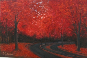 Red Wood Forest